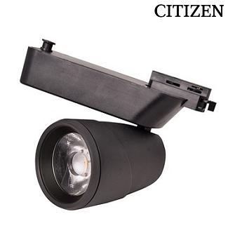 CITIZEN FL-2241 S - 40 Watt Siyah Kasa Ray Spot