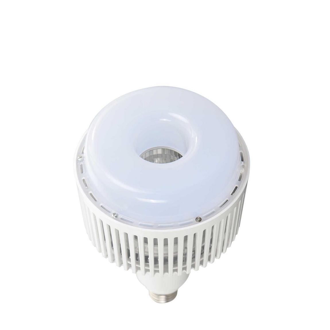 FORLIFE FL-6048 - 50 Watt LED Torch Ampul