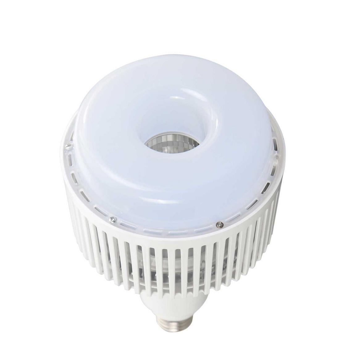 FORLIFE FL-6049 - 80 Watt LED Torch Ampul