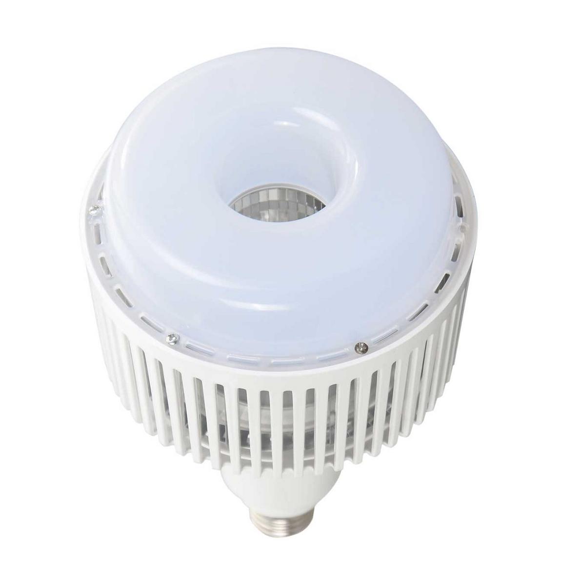 FORLIFE FL-6050 - 100 Watt LED Torch Ampul