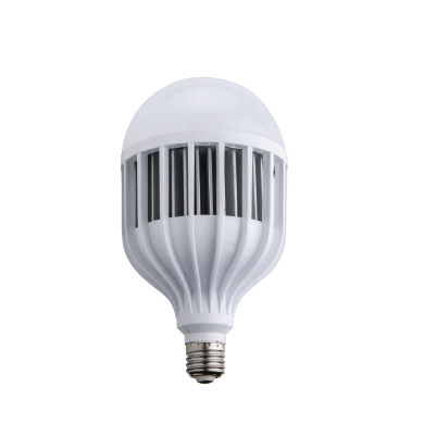 FORLIFE FL-E-1105 - 100 Watt LED Torch Ampul