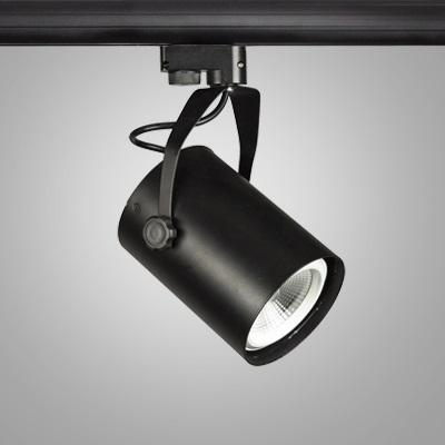 LEDwork LW-TR 101 - Ray Spot Kasası