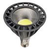 PAR38 LED Ampuller
